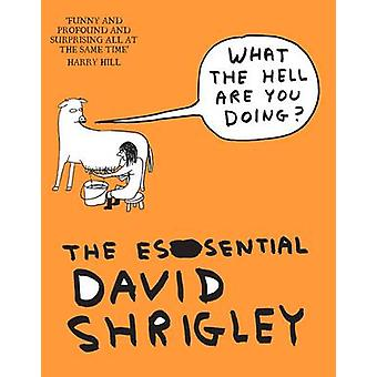 What the Hell are You Doing? - The Essential David Shrigley (Main) by