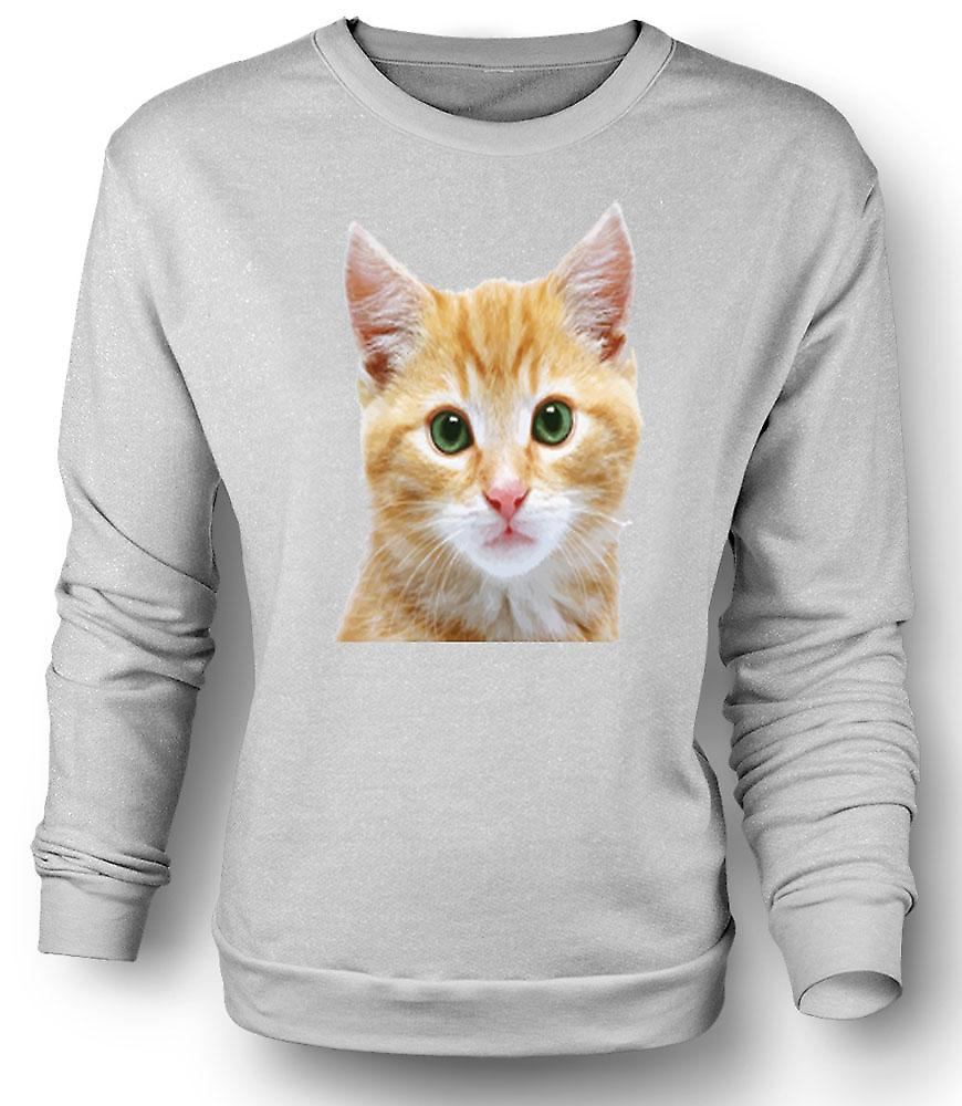 Mens Sweatshirt Cute Red Kitten Face Portrait