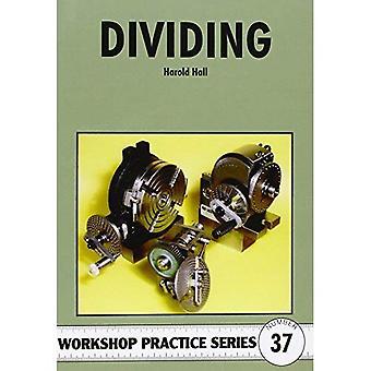 Dividing (Workshop Practice S)