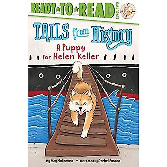 Ein Welpe für Helen Keller (Tails aus der Geschichte)