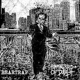 Hummingbird om døden & Beartrap - Split [Vinyl] USA import