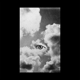Joni tomrum - uselvisk [Vinyl] USA importerer
