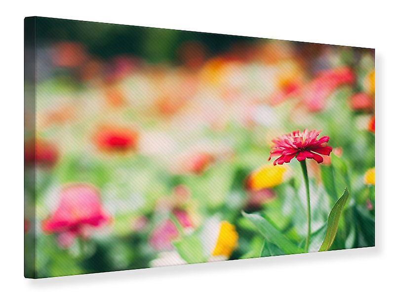 Impression de toile dans jardin fleuri