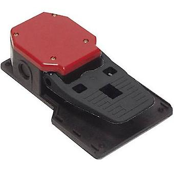 Foot switch 250 Vac 6 A 1-pedal 2 makers, 2 break
