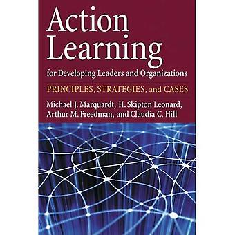 Aktion für die Entwicklung von Führungskräften und Organisationen lernen: Grundlagen, Strategien und Fälle
