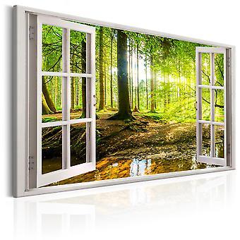 Canvas Print-fönster: Visa på skog