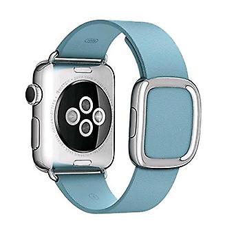 Apple 38mm jay modern strap size l blue