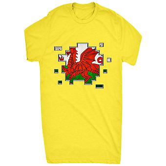 Renowned Welsh Flag 3D Pixel effect Inside horizontel