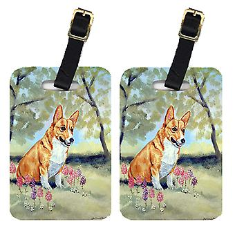 Carolines Treasures  7054BT Pair of 2 Corgi Luggage Tags