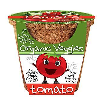 Pomidor Dunecraft Warzywa ekologiczne Science Kit