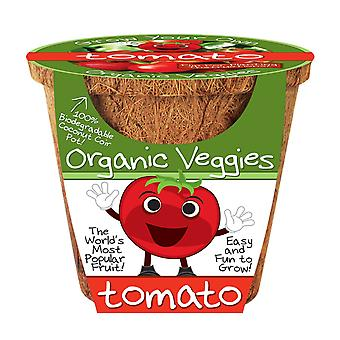 Dunecraft Tomato Organic Veggies Science Kit