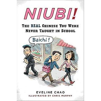 Niubi!: den riktiga kinesiska du aldrig lärde i skolan