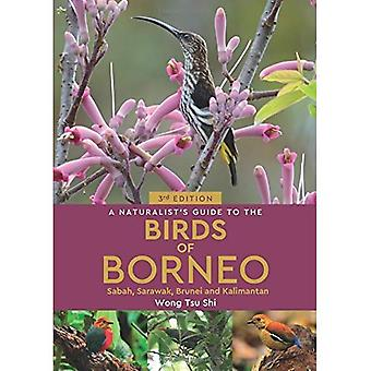 A Naturalist's Guide to the Birds of Borneo (3rd edition) (Naturalist's Guide)