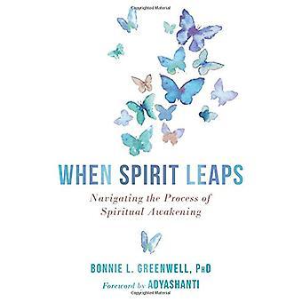 When Spirit Leaps - Navigating the Process of Spiritual Awakening by B