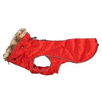 Buster Active Dog Coat High Risk Red Large