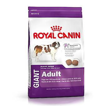 Royal Canin Giant Adult (Dogs , Dog Food , Dry Food)