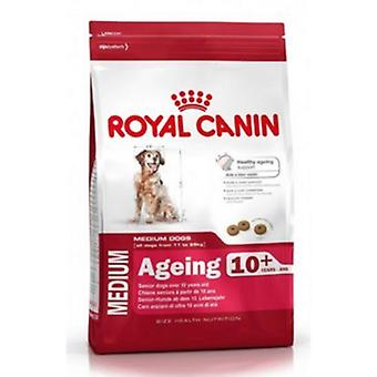 Royal Canin Maxi Ageing 8+ Dogs Food 15kg
