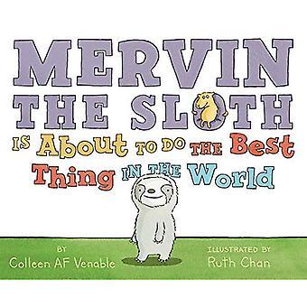 Mervin de luiaard Is bezig met het beste doen in de wereld