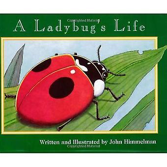 A Ladybug's Life (Nature Upclose)
