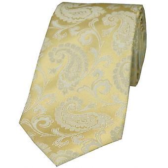 David Van Hagen lujo Paisley corbata de seda - oro