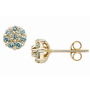 Affici 18ct Yellow Gold on 925 Sterling Silver Stud Earrings with Aquamarine CZ Gems