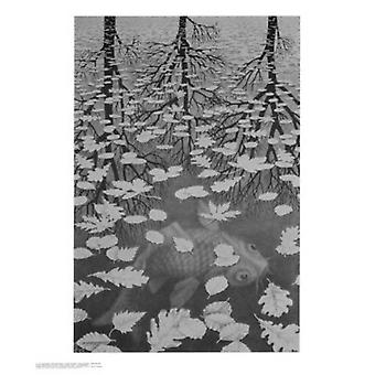 3 Worlds Poster Print by MC Escher (22 x 26)