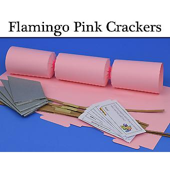 Flamingo Pink Make & Fill Your Own Cracker Making Craft Kits, Boards & Accs
