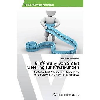 Einfuhrung Von Smart Metering Fur Privatkunden by Haunschmied Stefanie