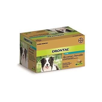 Drontal Chewable 10kg 80 pack