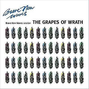 Grapes of Wrath - Brave New Waves Session [CD] USA import