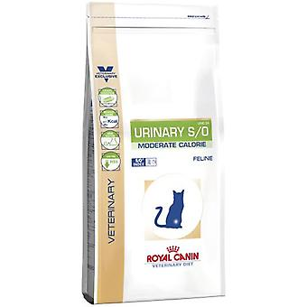 Royal Canin Urinary S/O (Cats , Cat Food , Dry Food)