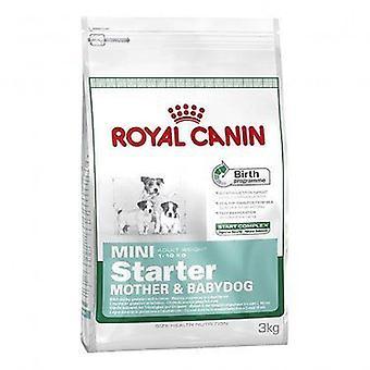 Royal Canin Mini Starter, dog dry food mix - 3 kg