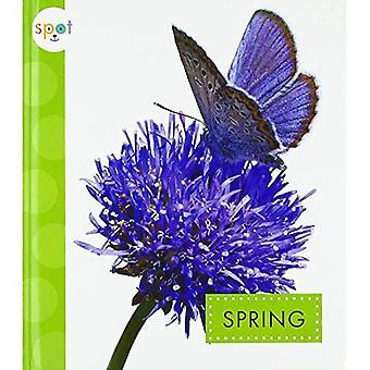 Spring (Spot Seasons)