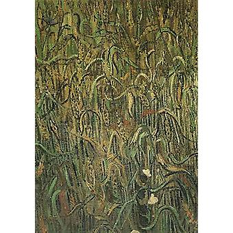 Ears of Wheat, Vincent Van Gogh, 64.5 x 48.5 cm