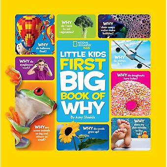 Big Book of Why: All Your Questions Answered Plus Games Recipes Crafts & More! (National Geographic Little Kid) (National Geographic Little Kids First Big Books) (Hardcover) by Shields Amy