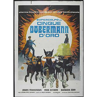The Amazing Dobermans Movie Poster (11 x 17)