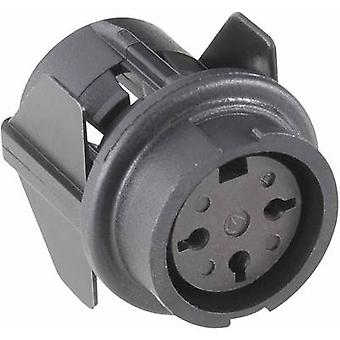 Round connector C091/B Number of pins: 7 Connector socket 5 A T 3437 500