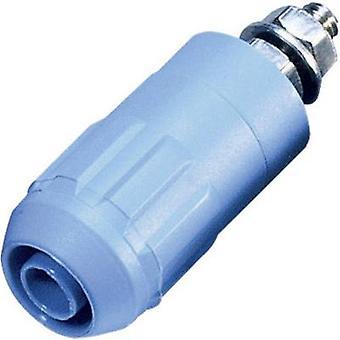 Stäubli XUB-G Jack socket Socket, vertical vertical Pin diameter: 4 mm Blue 1 pc(s)