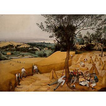 The Corn Harvest, Pieter BRUEGEL the Elder, 50x40cm