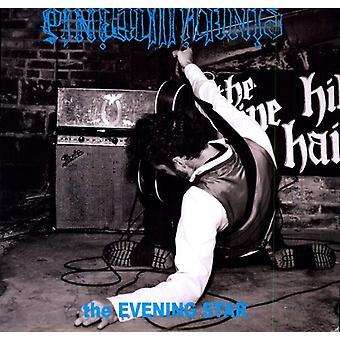 Pine Hill Haints - Evening Star [Vinyl] USA import
