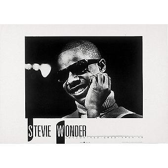 Stevie Wonder Poster Print (28 x 20)