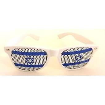 Israels Flag Wayfarer briller