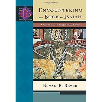 Möter Jesajas bok: en historisk och teologisk undersökning (stöter bibliska studier): en historisk och teologisk undersökning (stöter bibliska studier)