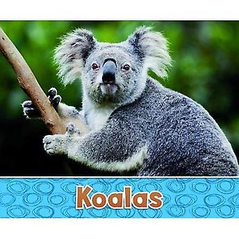 Australijski zwierząt opakowanie A 2