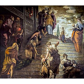 Presentation of the Virgin at the, Jacopo Tintoretto, 50x44cm
