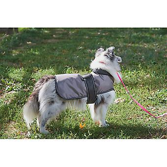 Dog Artic Coat-Grey Medium 752565
