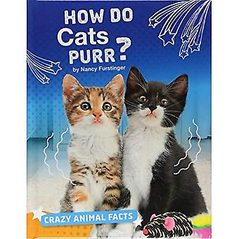 How Do Cats Purr? (Crazy Animal Facts)
