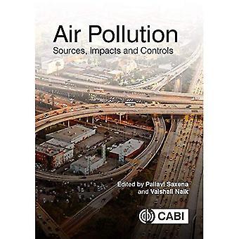 Pollution de l'air: Sources, les Impacts et les contrôles