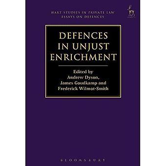 Defences in Unjust Enrichment (Hart Studies in� Private Law: Essays on Defences)