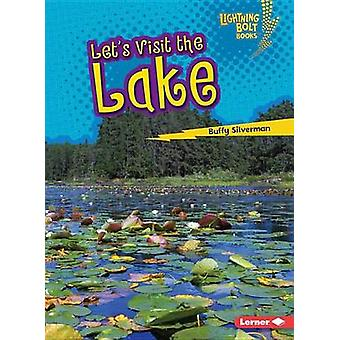 Let's Visit the Lake by Buffy Silverman - 9781512412314 Book